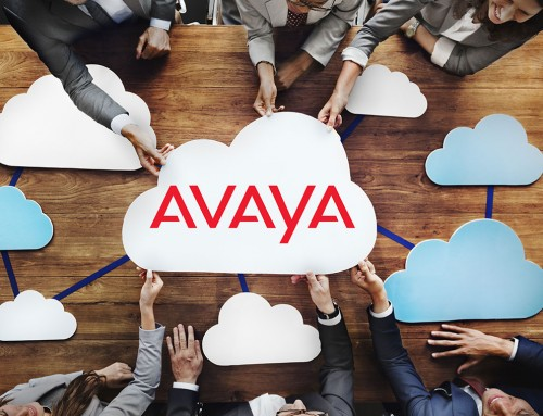 Arrow Partner Spotlight: Avaya