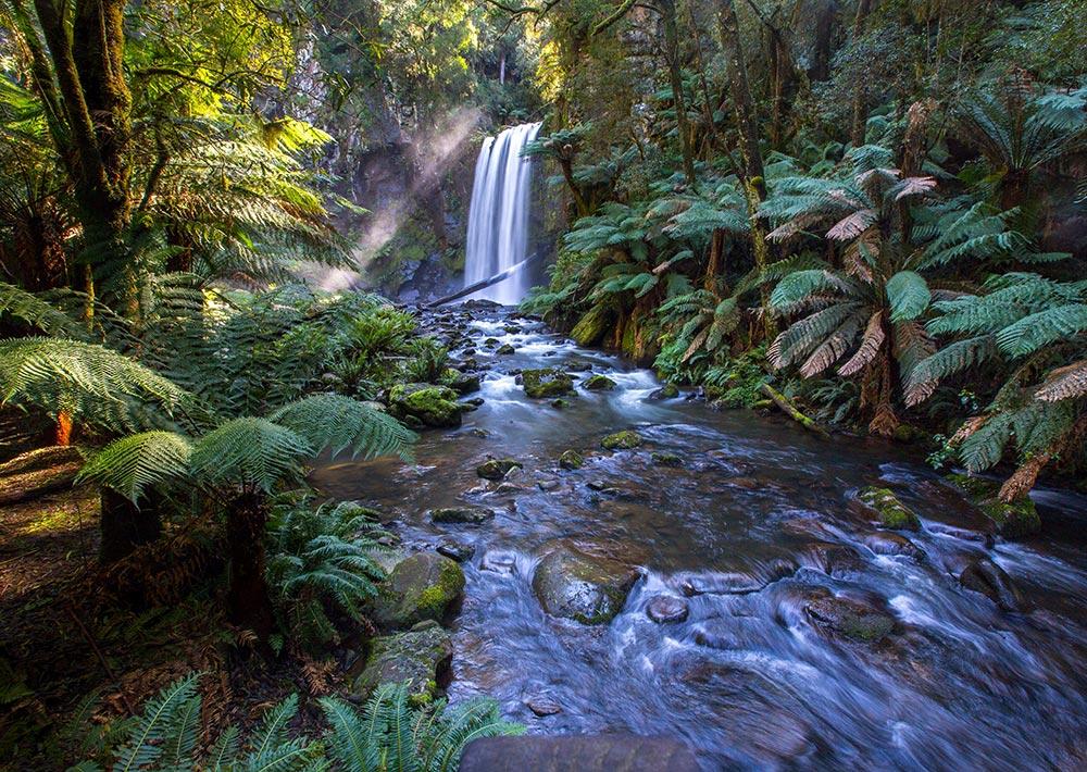 Waterfall in Australian Bushland